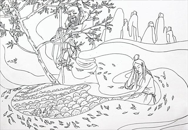 这株茶树被《中国茶叶大辞典》收入《中国野生茶树种质资源名录》.