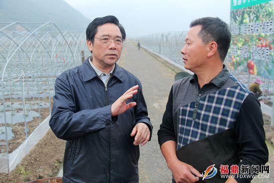 陈荣凯一行莅鼎开展农业农村工作调研--福鼎新闻网|福鼎市