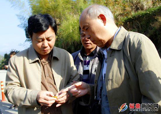 全国人大农业与农村委员会委员张晓山莅鼎开展农产业调研-