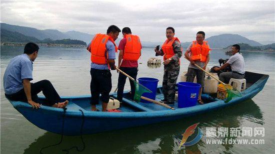 点头镇:清理整治海漂垃圾行动 保护海洋环境