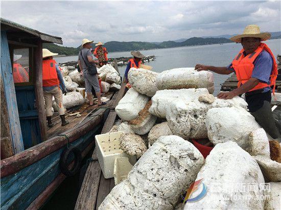 白琳:清理海漂垃圾 共建蓝色海洋