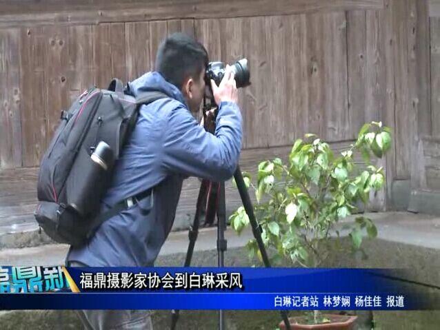 福鼎摄影家协会到白琳采风