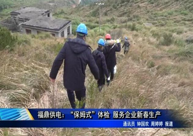 """福鼎供电:""""保姆式""""体检 服务企业新春生产"""