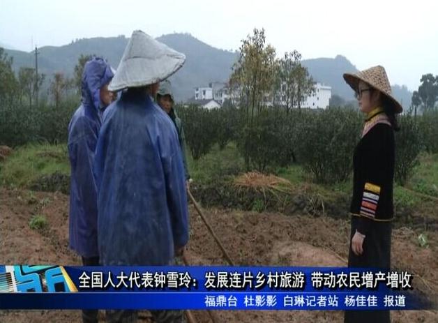 全国人大代表钟雪玲:发展连片乡村旅游 带动农民增产增收