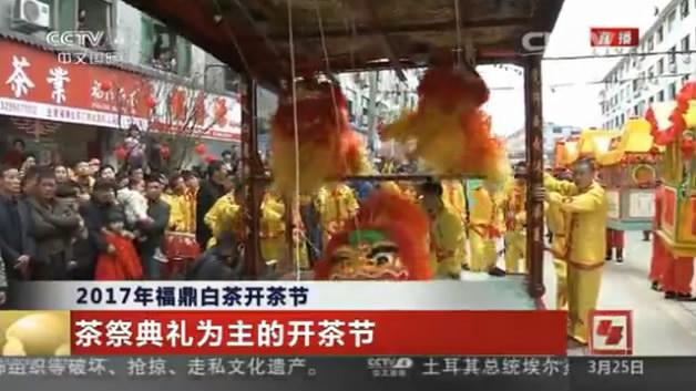 CCTV4:福鼎开茶节