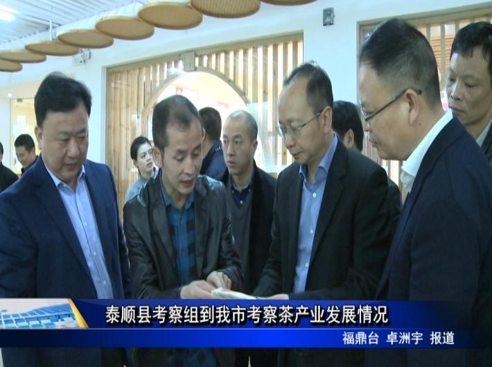 泰顺县考察组到我市考察茶产业发展情况