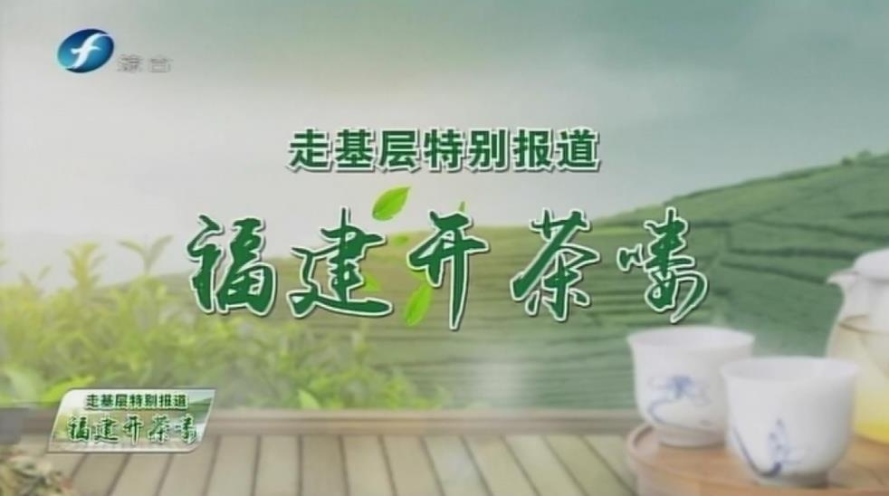 福鼎白茶开茶节