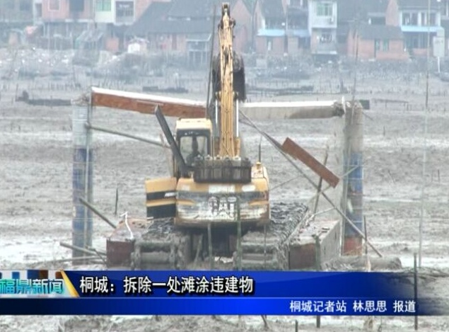 桐城:拆除一处滩涂违建物