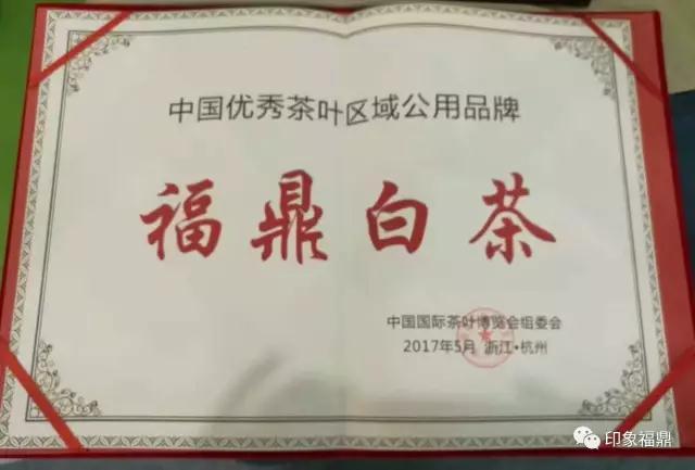 """【第一时间】福鼎白茶荣膺中国茶叶区域优秀品牌,再添极具含金量的""""金字招牌"""""""