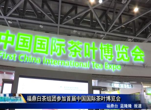 福鼎白茶组团参加首届中国国际茶叶博览会
