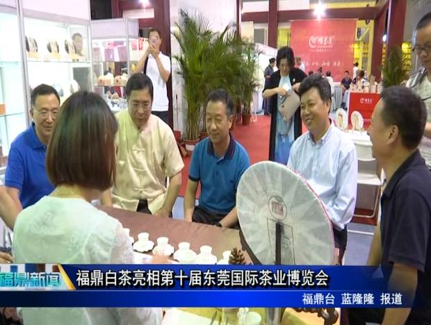 福鼎白茶亮相第十届东莞国际茶业博览会
