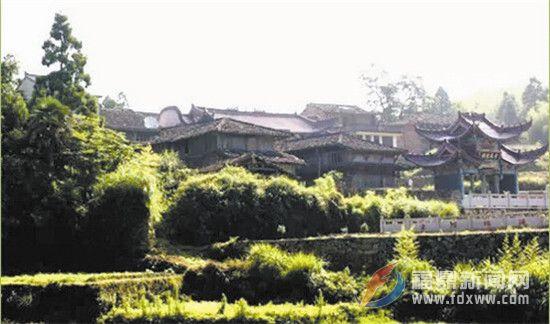 """恋上""""青村""""———南广村"""