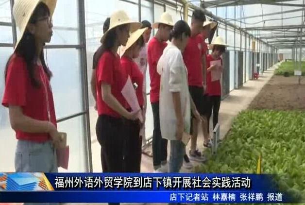 福州外语外贸学院到店下镇开展社会实践活动