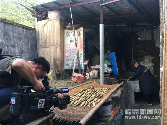 拍摄村民劳作.jpg