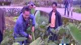 福鼎:培训新型职业农民 为农业发展提供专业人才