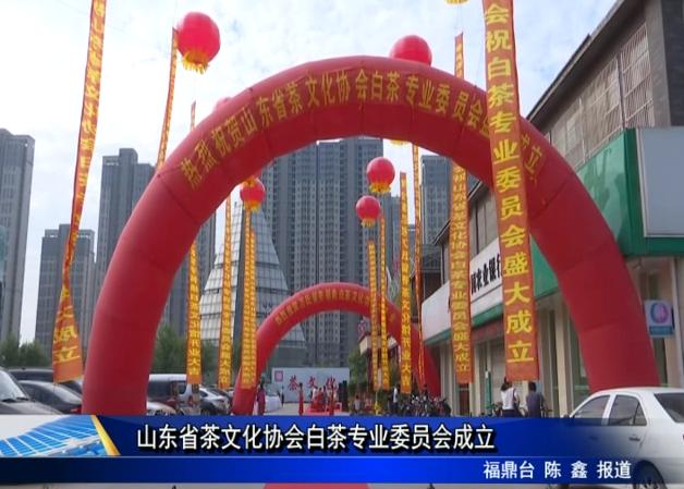 山东省茶文化协会白茶专业委员会成立