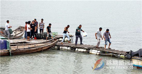 渔船避风——人员上岸4.jpg