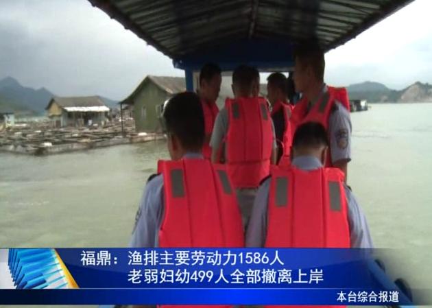 福鼎:渔排主要劳动力1586人,老弱妇幼499人全部撤离上岸