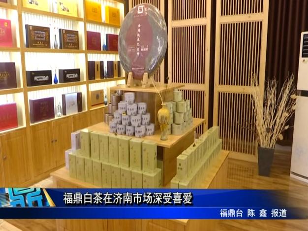福鼎白茶在济南市场深受喜爱