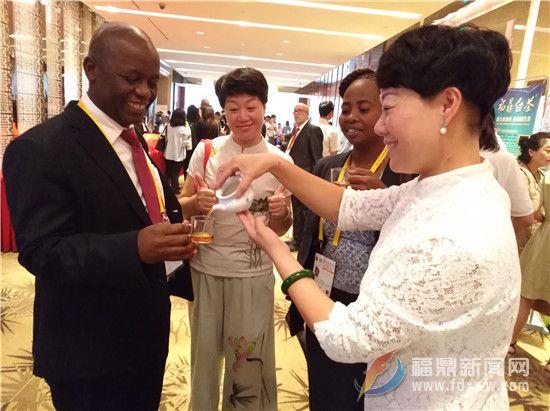 非洲朋友对白茶有深厚的兴趣让茶商欣喜.jpg