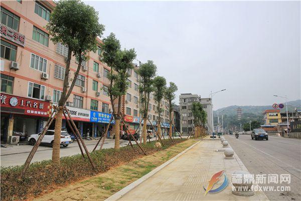 城区又一处绿化景观工程竣工