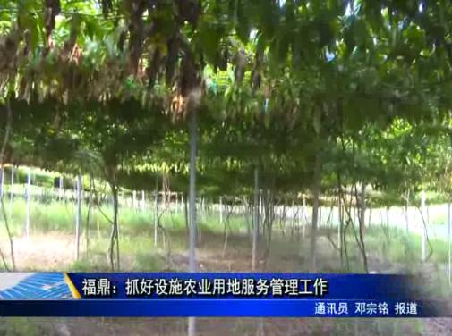 福鼎:抓好设施农业用地服务管理工作