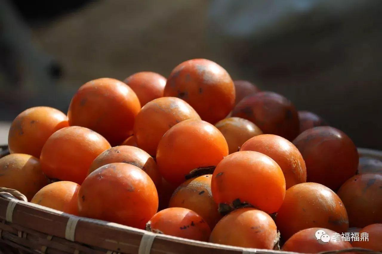 这个季节,没吃过它的果实,那真是一大遗憾!
