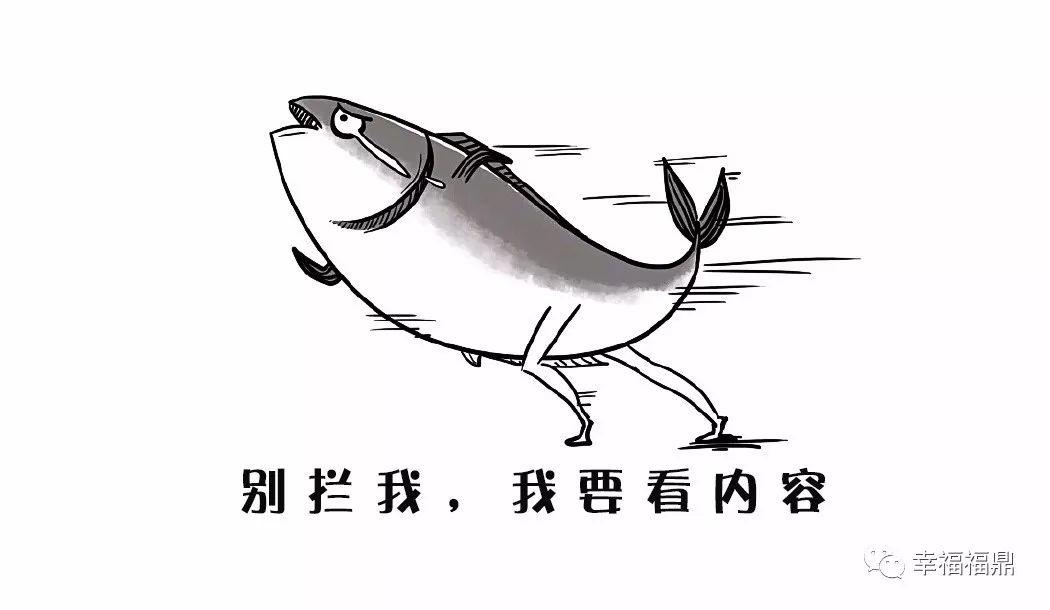 有意思,福鼎的一条鱼上了央视!