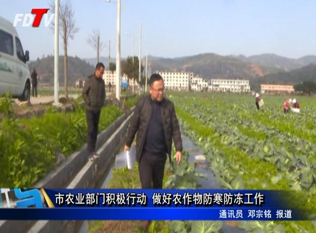 市农业部门积极行动 做好农作物防寒防冻工作