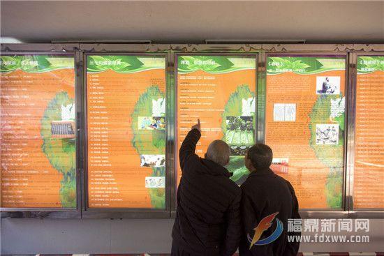 展示国学文化 喜迎新春佳节