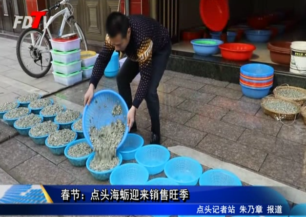 春节:点头海蛎迎来销售旺季