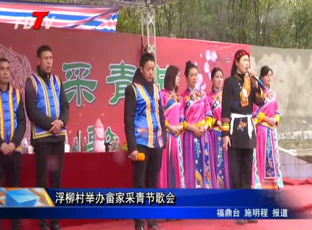 浮柳村举办畲家采青节歌会