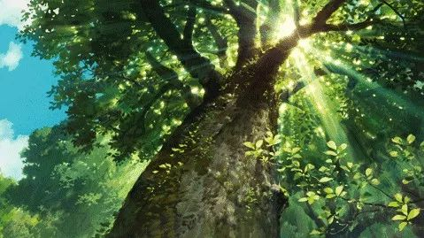 """植树造林正当时,你为福鼎""""添绿""""了吗?"""