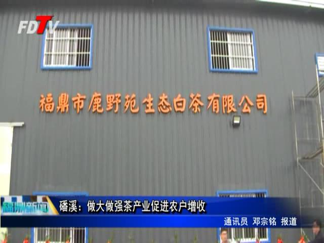 磻溪:做大做强茶产业促进农户增收