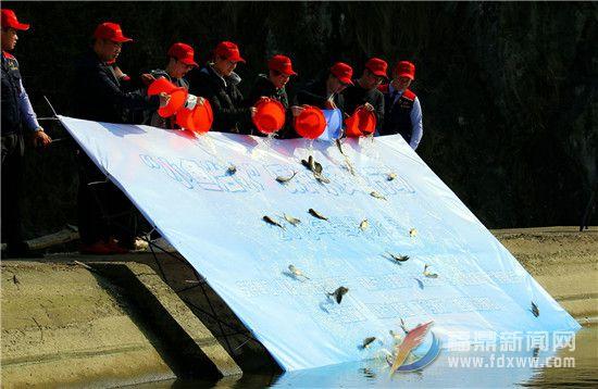 世界水日当天 500多条鲢鱼放生水库
