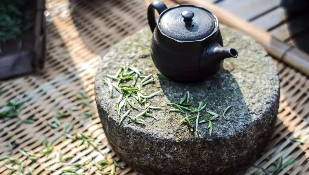 十里清风香,各地茶人共赴太姥山白茶头採盛会!