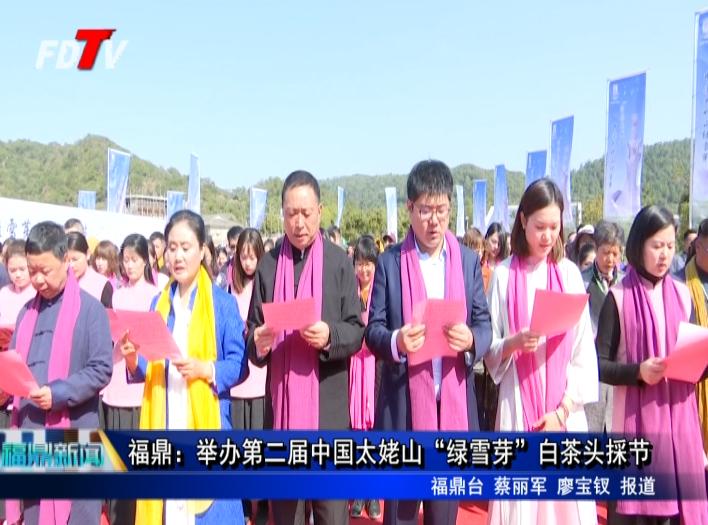 """福鼎:举办第二届中国太姥山""""绿雪芽""""白茶头採节"""
