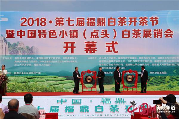 中国白茶之乡福鼎2018年第七届开茶节鸣锣