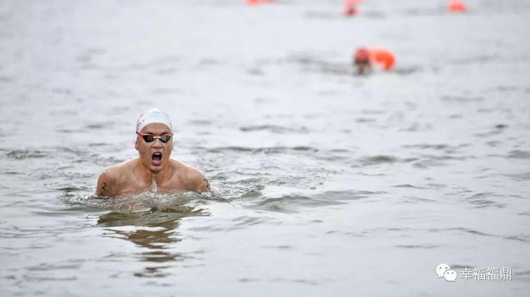 精彩倒计时!全国游泳赛即将在福鼎开赛,精彩看点为你奉上