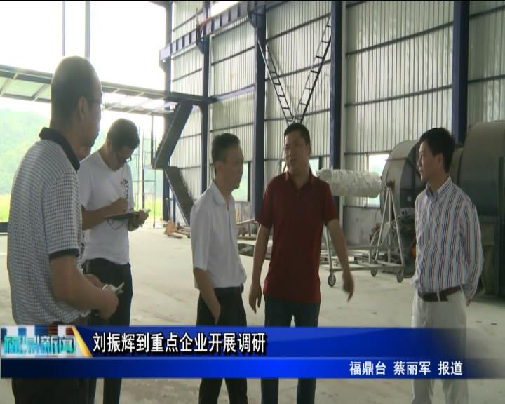 刘振辉到重点企业开展调研