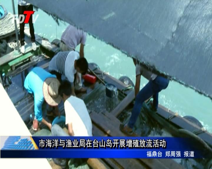 市海洋与渔业局在台山岛开展增殖放流活动
