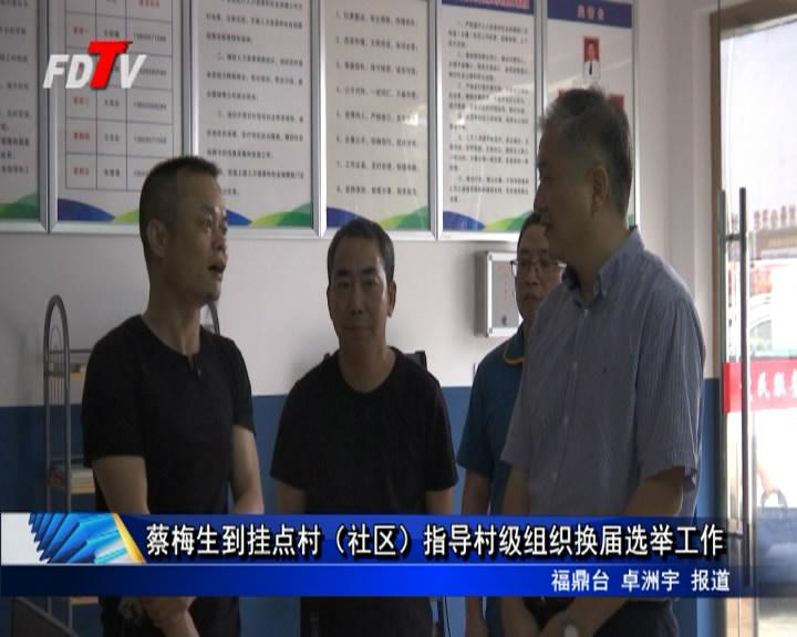 蔡梅生到挂点村(社区)指导村级组织换届选举工作