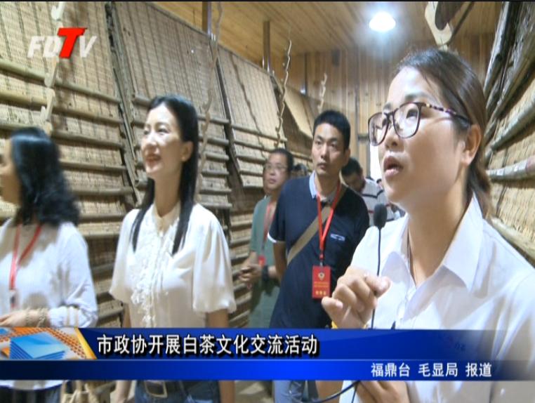 市政协开展白茶文化交流活动