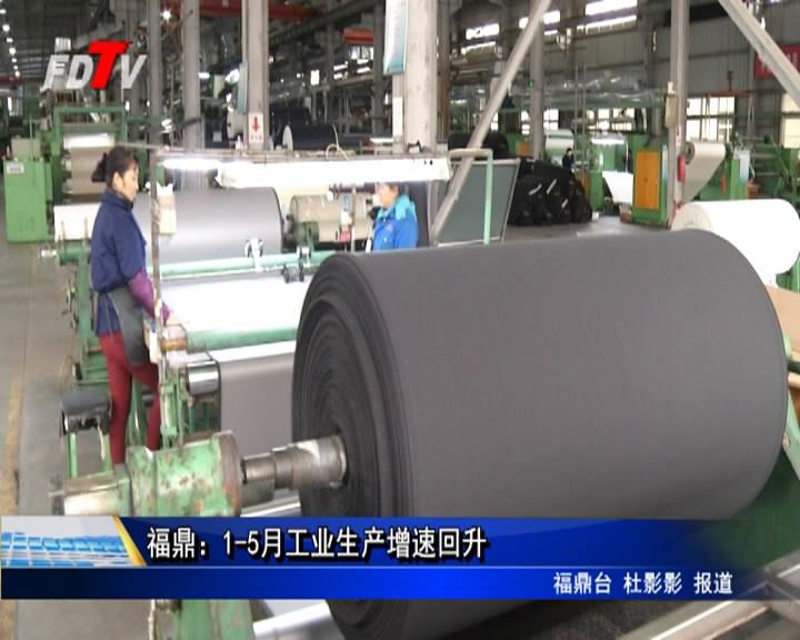 福鼎:1-5月工业生产增速回升