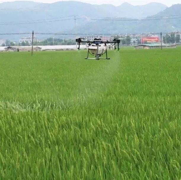 机械化助耕省时省力,福鼎农业生产再添好帮手
