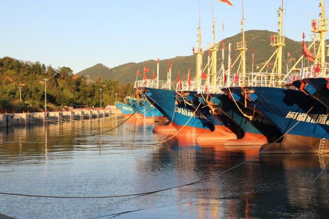 """台风""""玛莉亚""""临近 三百余艘渔船进入点头岐头港避风锚地避风"""