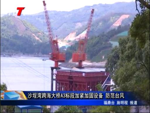 沙埕湾跨海大桥A3标段加紧加固设备 防范台风