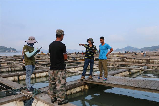 福鼎市开展海上养殖灾后整治