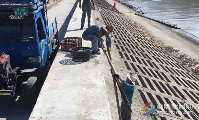太姥山镇开展海漂垃圾治理行动