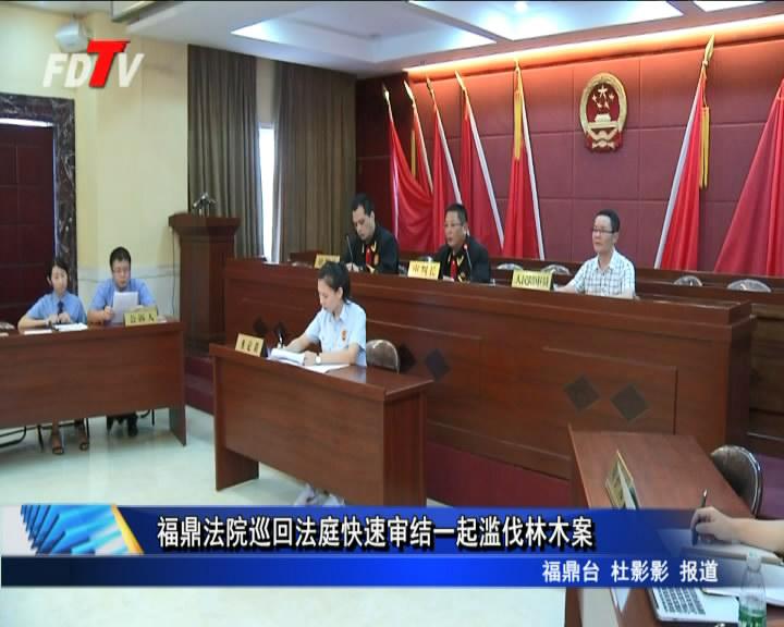 福鼎法院巡回法庭快速审结一起滥伐林木案